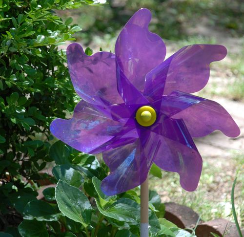 2010 garden 013