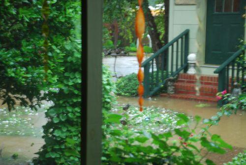 Flood 042