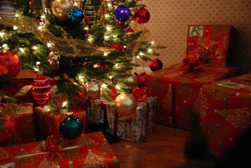 Christmas10 003