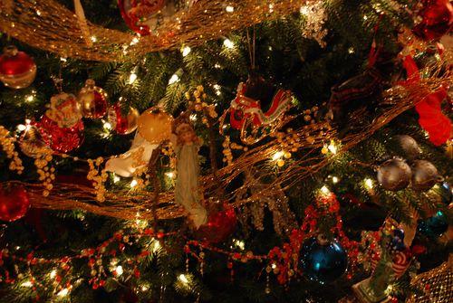 Christmas10 092