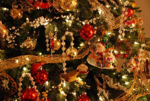 Christmas10 097