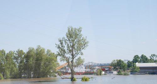 Flood3 017