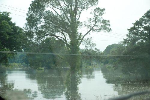 Flood2 006